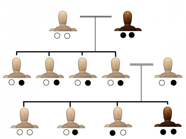 遺伝子.jpg